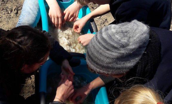 Wollverarbeitung am Schlänitzsee